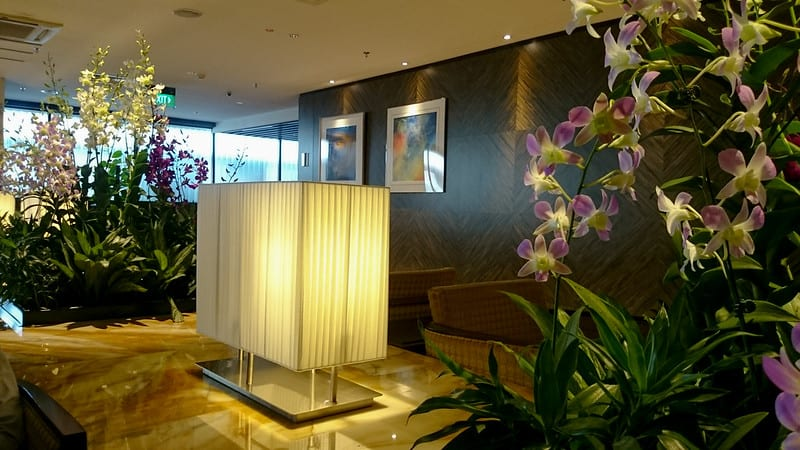 25603472402 8411c9f2ec c - REVIEW - Singapore Airlines : First Class Lounge, SIN T2