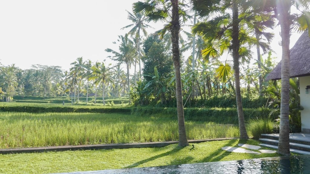 7Ubud Villa Kerasan 22 1024x576 - REVIEW - Villa Kerasan, Ubud (AirBnB)