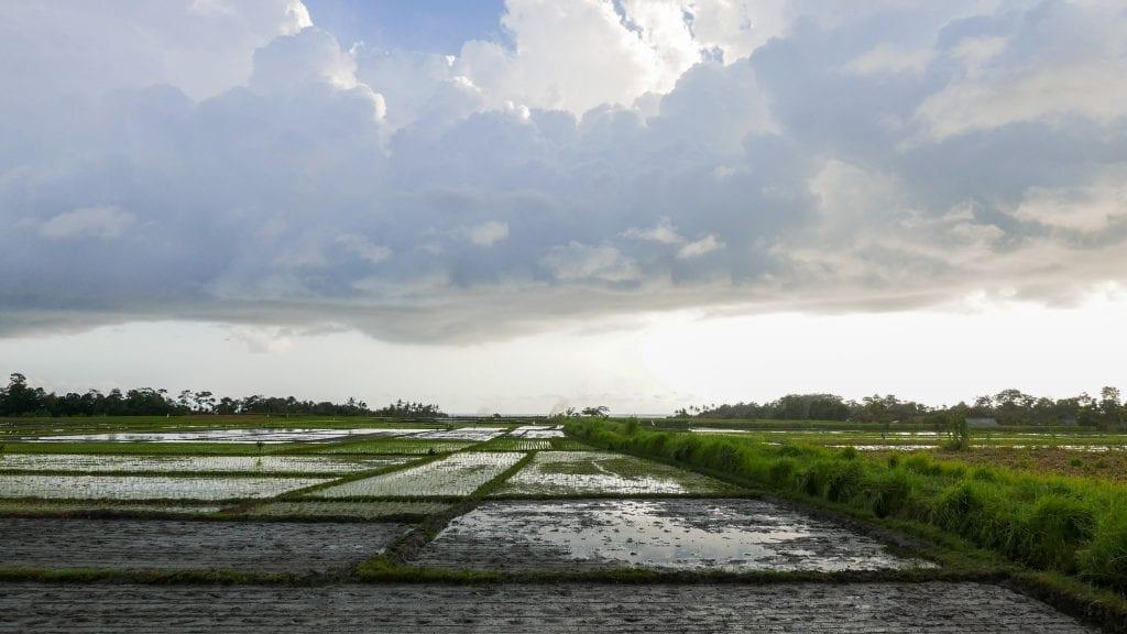 8Alila Soori 72 1024x576 - REVIEW - Soori Bali (formerly Alila Villas Soori)