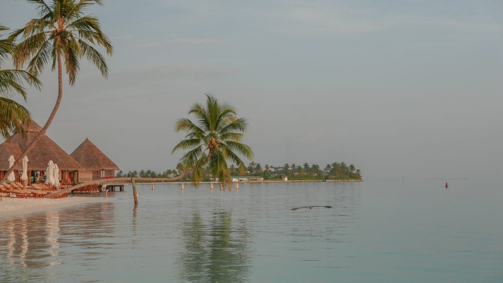 Island comparison 7 1024x576 - GUIDE - A comparison between the Main Island and Quiet Island at the Conrad Maldives