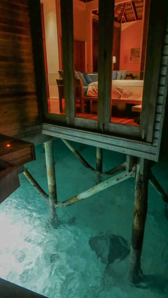 Retreat Water Villa Rangali 2016 52 576x1024 - REVIEW - Conrad Maldives : Retreat Water Villa