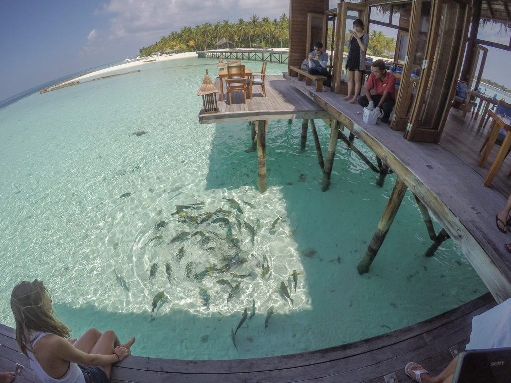 FB Mandhoo 17 1024x768 - GUIDE - Eating and Drinking at the Conrad Maldives