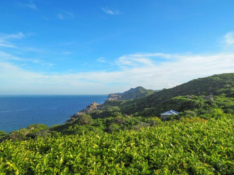 Amanoi 22 768x576 - REVIEW - Amanoi : Mountain / Ocean Pool Villa