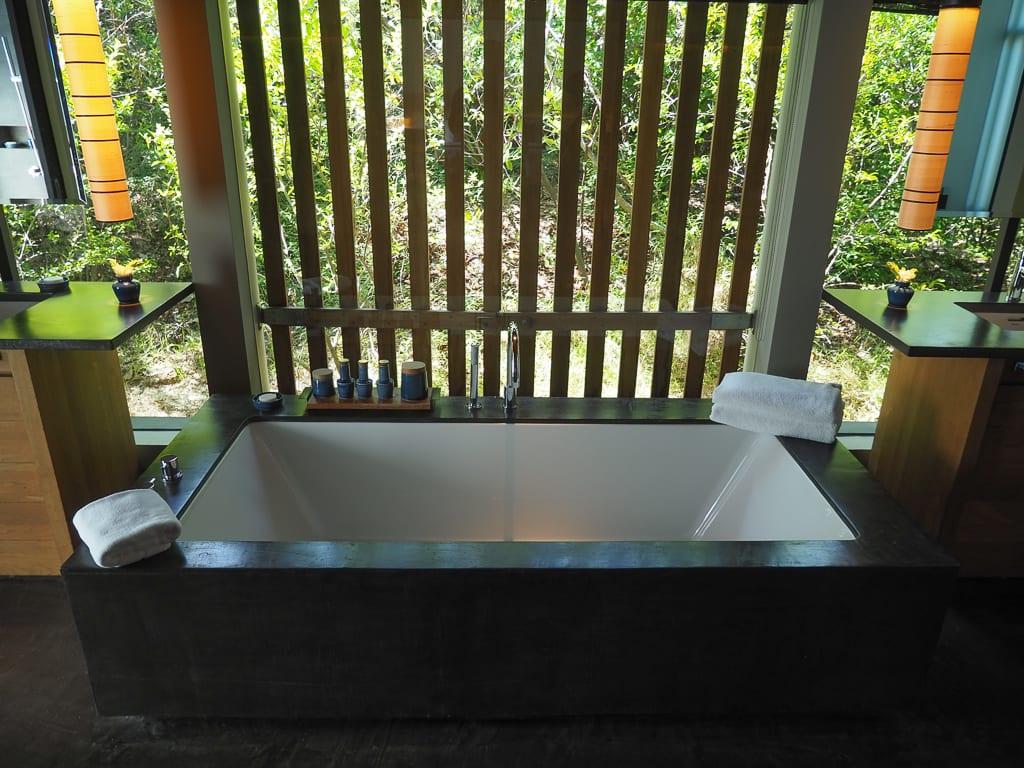 Amanoi 55 - REVIEW - Amanoi : Mountain / Ocean Pool Villa