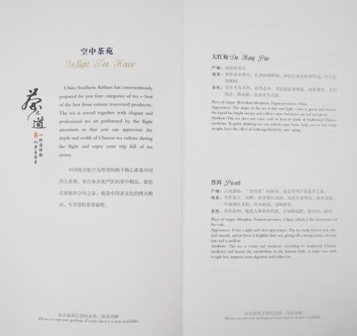 CZ A330 J 34 640x480 - REVIEW - China Southern : Business Class - A330 - Guangzhou CAN to Paris CDG