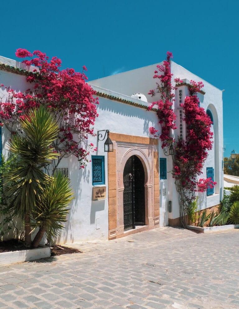 FS Tunis 144 768x992 - REVIEW - Four Seasons Tunis : Premier Room