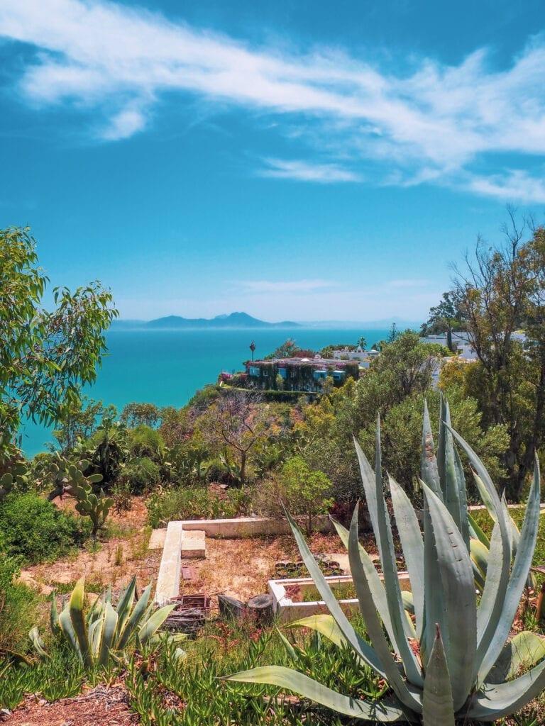 FS Tunis 147 768x1024 - REVIEW - Four Seasons Tunis : Premier Room