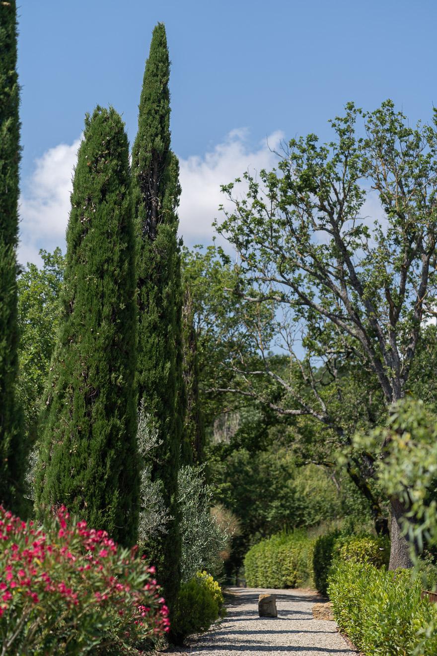 lupaia 7 - REVIEW - Lupaia : San Biagio Suite [COVID-era]