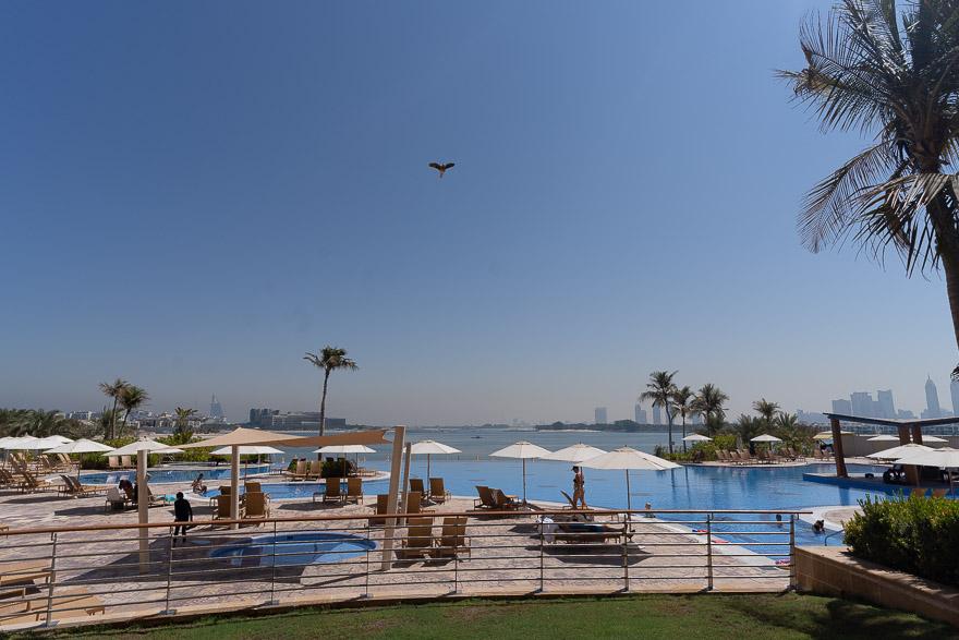 andaz palm 91 - REVIEW - Andaz Dubai The Palm : Terrace Suite [COVID-era]