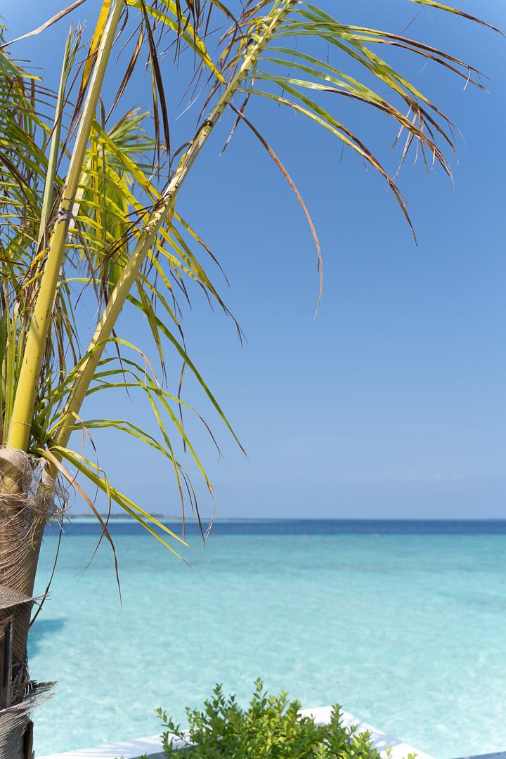 finolhu 188 - REVIEW - Finolhu : Ocean Pool Villa