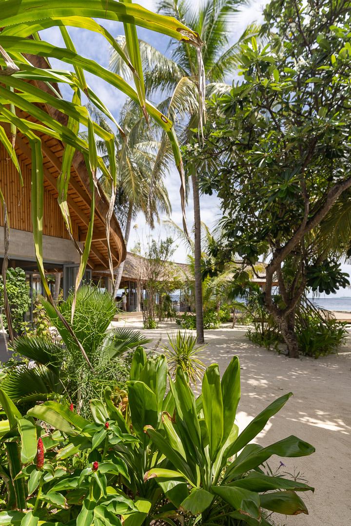 maafushivaru 22 - REVIEW - Lti Maafushivaru : Water Pool Villa
