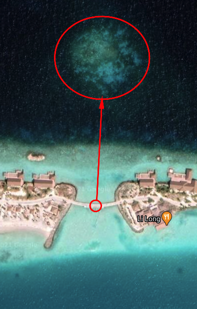 snorkelling waldorf - REVIEW - Waldorf Astoria Maldives Ithaafushi : King Reef Villa & King Ocean Villa