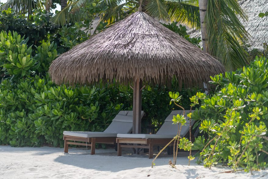 waldorf astoria maldives public spaces 17 880x587 - REVIEW - Waldorf Astoria Maldives Ithaafushi : King Reef Villa & King Ocean Villa
