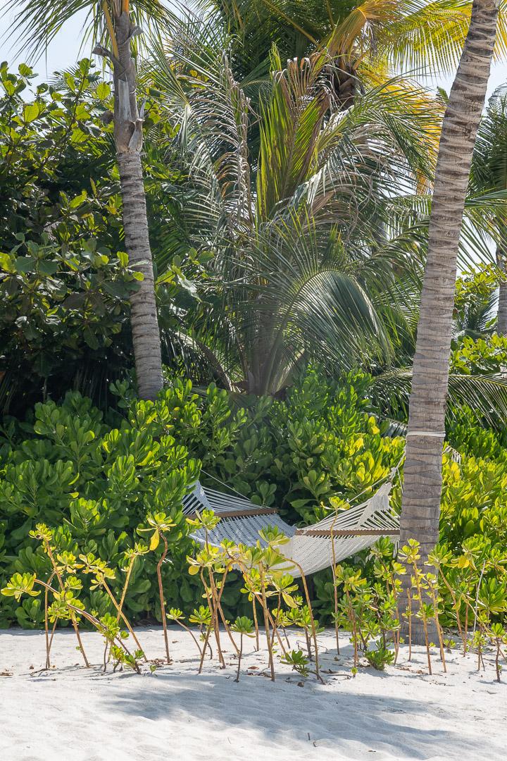 waldorf astoria maldives public spaces 35 - REVIEW - Waldorf Astoria Maldives Ithaafushi : King Reef Villa & King Ocean Villa