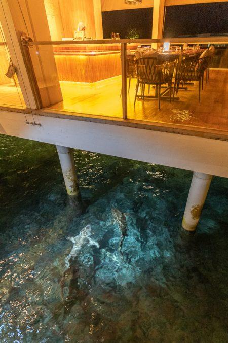Amilla 197 450x676 - REVIEW - Amilla : Sunset Water Pool Villa