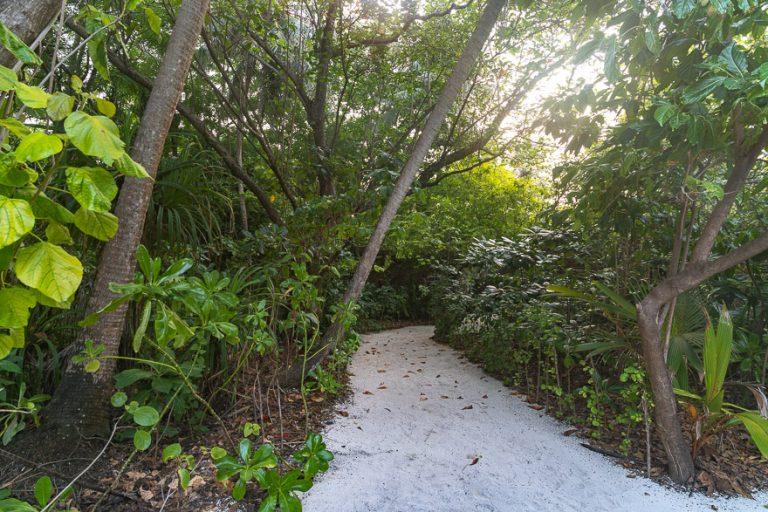 Amilla 245 768x512 - REVIEW - Amilla : Sunset Water Pool Villa