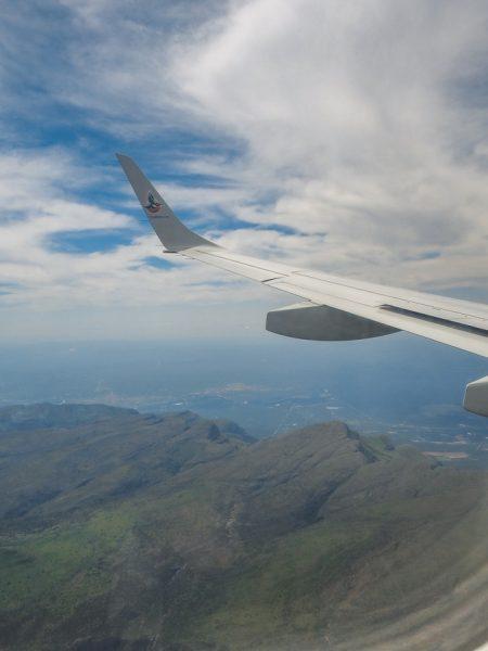 SA airlink 1 450x600 - REVIEW - Silvan Safari (Sabi Sands, SA)
