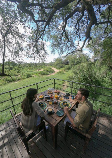 silvan 142 450x635 - REVIEW - Silvan Safari (Sabi Sands, SA)