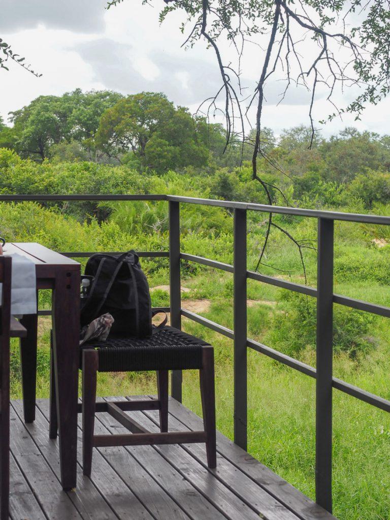 silvan 151 768x1024 - REVIEW - Silvan Safari (Sabi Sands, SA)