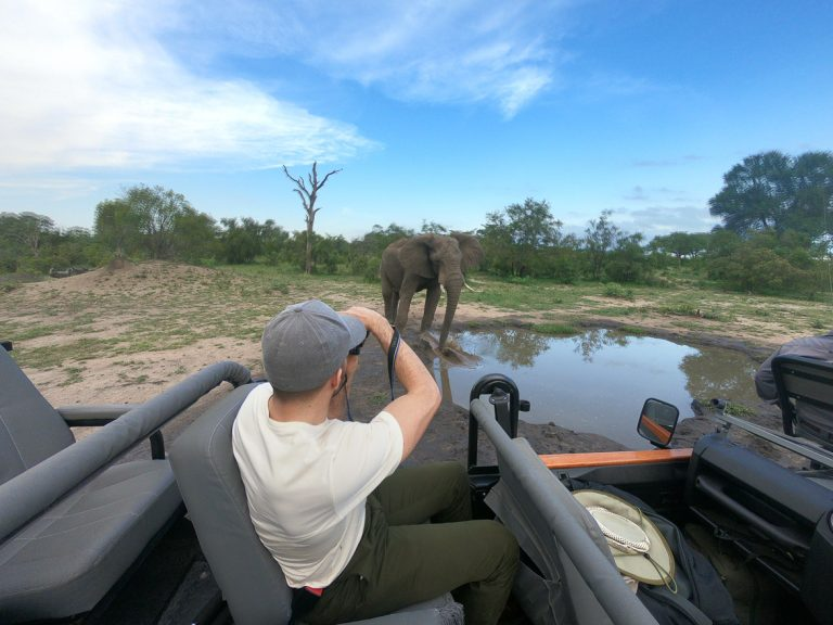 silvan 179 768x576 - REVIEW - Silvan Safari (Sabi Sands, SA)