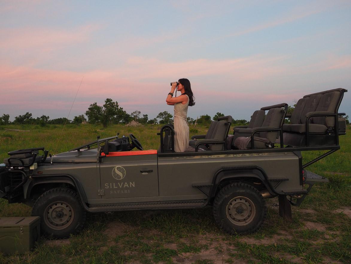 silvan 188 - REVIEW - Silvan Safari (Sabi Sands, SA)