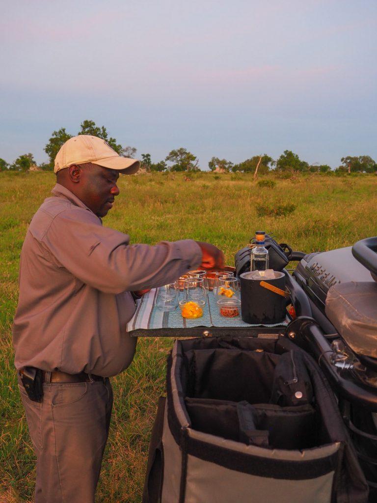 silvan 194 768x1024 - REVIEW - Silvan Safari (Sabi Sands, SA)