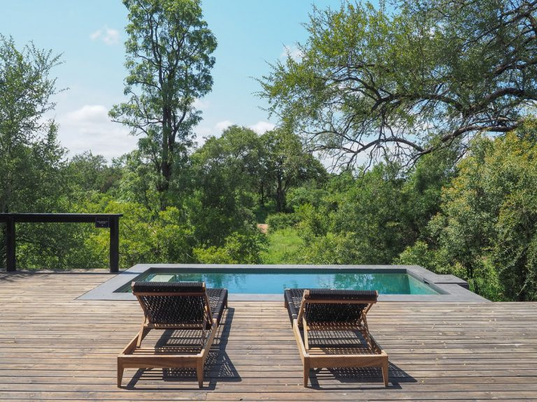 silvan 36 768x576 - REVIEW - Silvan Safari (Sabi Sands, SA)