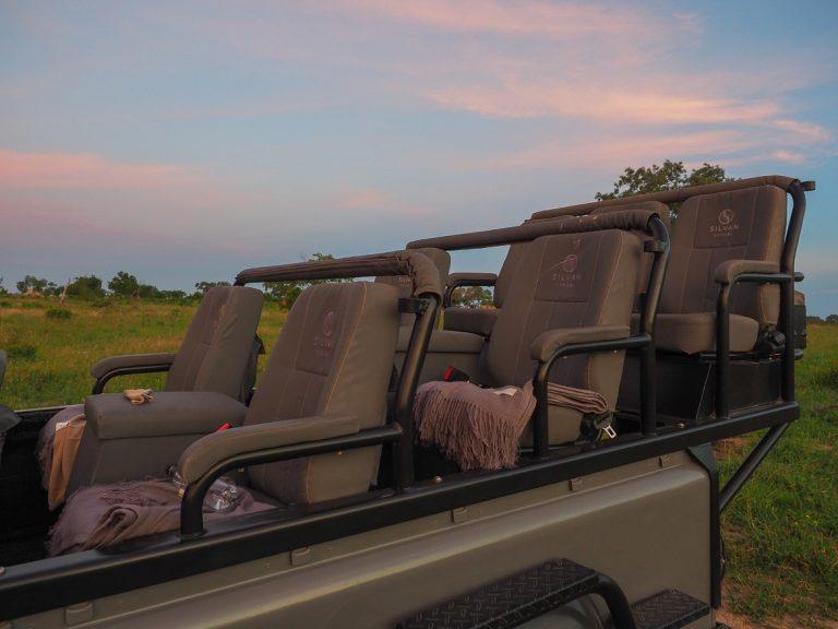 silvan 89 768x576 - REVIEW - Silvan Safari (Sabi Sands, SA)