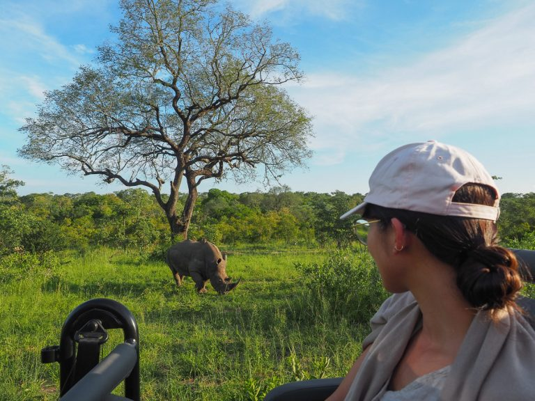silvan 96 768x576 - REVIEW - Silvan Safari (Sabi Sands, SA)