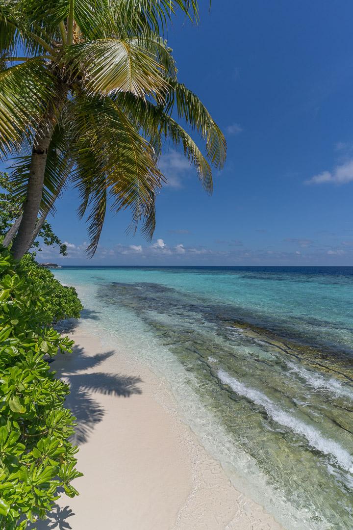 PH Maldives 116 - REVIEW - Park Hyatt Maldives