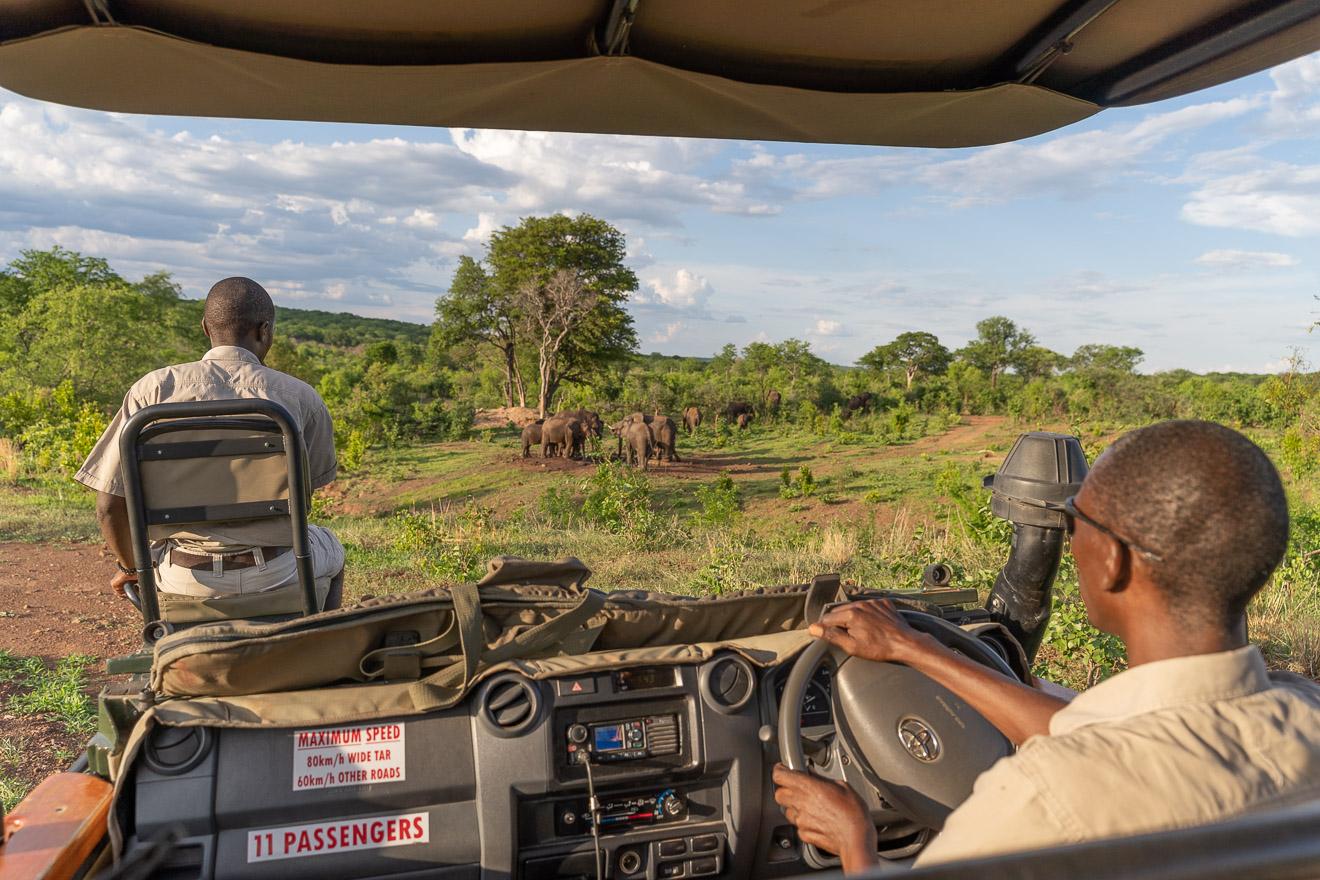 Matetsi 156 - REVIEW - Matetsi Victoria Falls (Zimbabwe)
