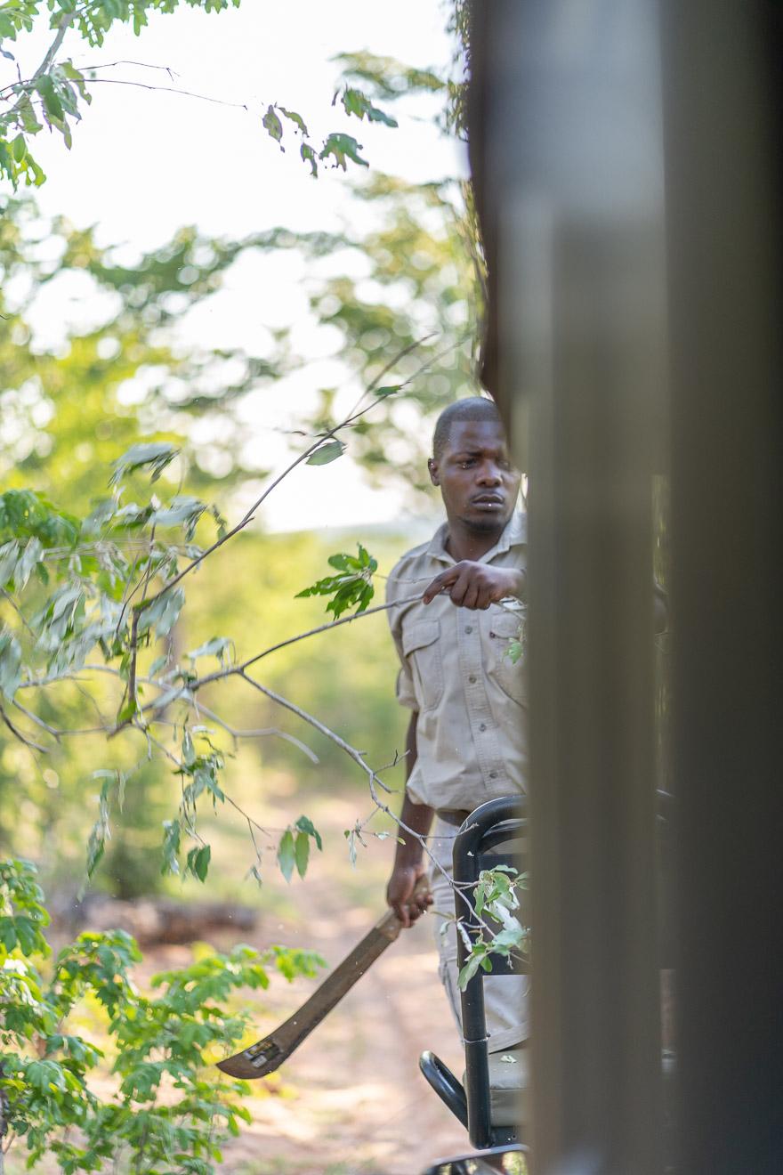 Matetsi 67 - REVIEW - Matetsi Victoria Falls (Zimbabwe)